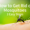 Cedar Oil Store blog post image, how to get rid of mosquitoes: 3 steps