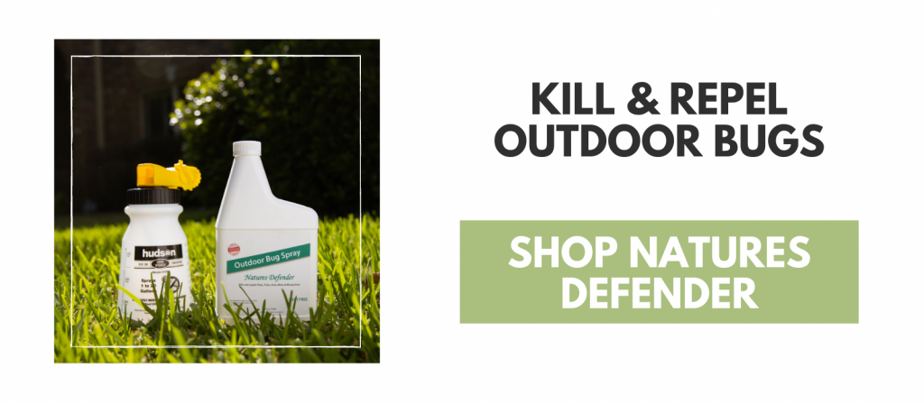 Are You Ready for These Fall & Winter Pests? Kill & Repel Outdoor Bugs, drop natures defender